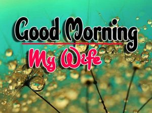 Best Good Morning For Whatsapp Images