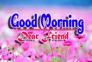 Best Good Morning For Whatsapp Images HD