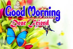 Best Good Morning For Whatsapp Images Photo