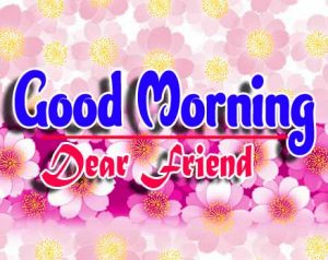 Best Good Morning For Whatsapp Images Pics