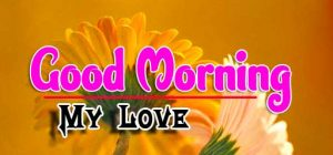 Best Good Morning For Whatsapp Photo Images