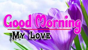 Best Good Morning For Whatsapp Wishes