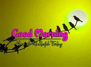 Best Good Morning Friday Download