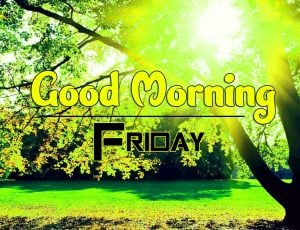 Best Good Morning Friday photo Hd