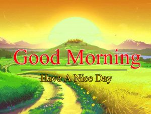 Best Good Morning Images Free Dowlnoad
