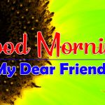 Best Good Morning Photo Images HD Download