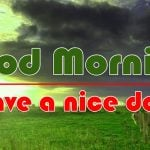 Best Good Morning Photo Pics