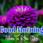Best Good Morning Pics Free Download