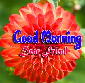 Best Good Morning Pics Pictures