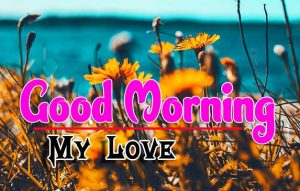 Best Good Morning Pictures Pics