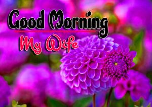 Best Good Morning Pictures Wallpaper