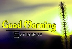 Best Good Morning Saturday Pictures Hd