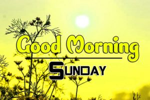 Best Good Morning Sunday Images Hd