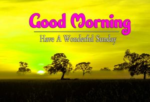 Best Good Morning Sunday Photo Hd