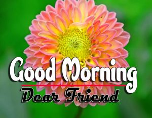 Best Good Morning Wallpaper Pictures