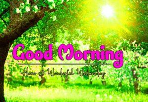 Best Good Morning Wednesday Photo Images