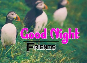 Best Good Night Images For Friends