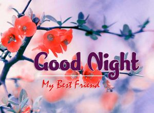 Best Good Night Images For Friends Download