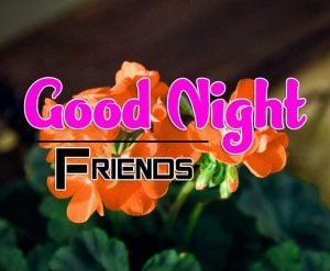 Best Good Night Images For Friends Download Free