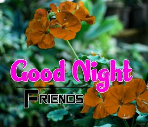 Best Good Night Images For Friends Download Hd