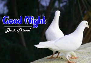 Best Good Night Images For Friends Images