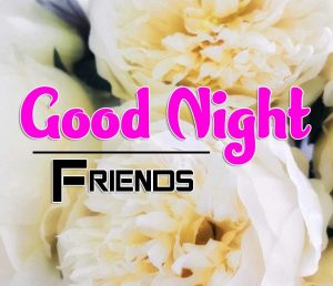 Best Good Night Images For Friends Images Free
