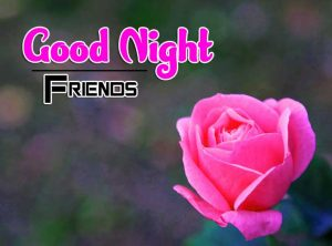 Best Good Night Images For Friends Images Hd