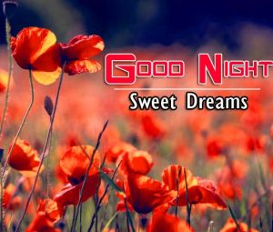 Best Good Night Images For Friends Images Photo
