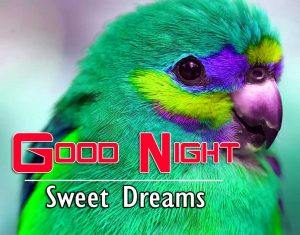 Best Good Night Images For Friends Images Wallpaper