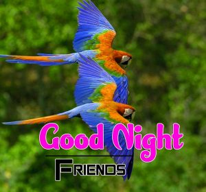Best Good Night Images For Friends Photo