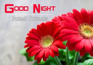 Best Good Night Images For Friends Pics