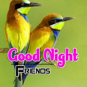 Best Good Night Images For Friends Pictures