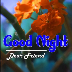 Best Good Night Images For Friends Pictures HD