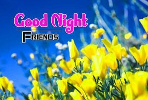 Best Good Night Images For Friends Wallpaper Images