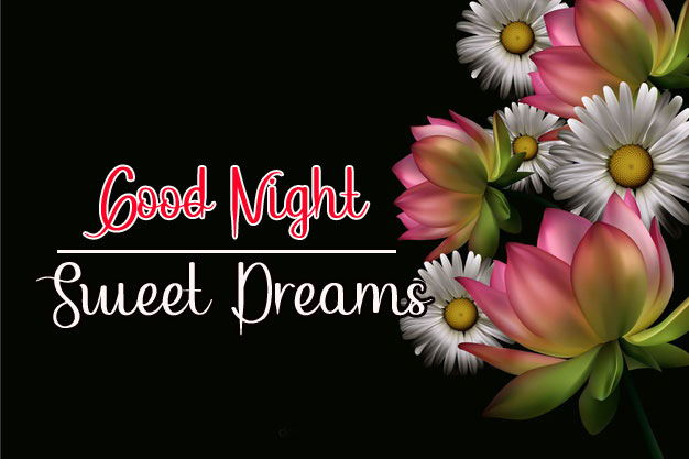 Best Good Night Images pics photo pictures hd