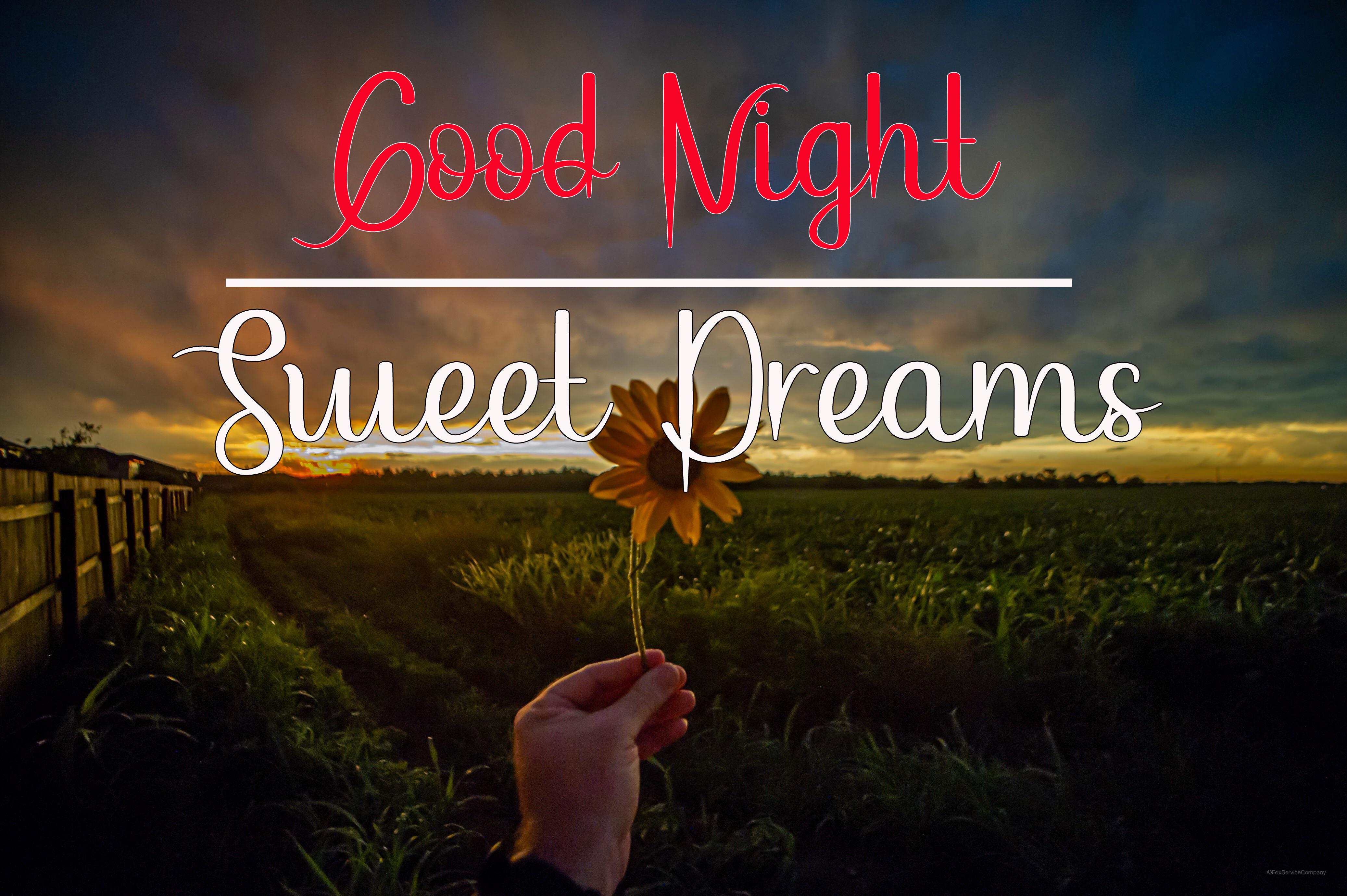 Best Good Night Images pics wallpaper download