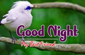 Best Good Night Pics Photo