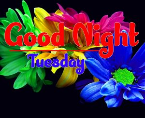 Best Good Night Tuesday Images Pic Download