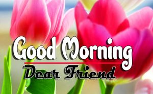 Best Latest Good Morning Download Free