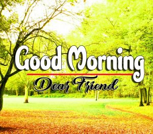 Best Latest Good Morning Images Hd Photo