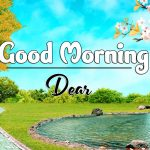Best Latest Good Morning Photo Free