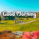 Best Latest Good Morning Pics