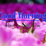 Best Latest Good Morning Wallpaper