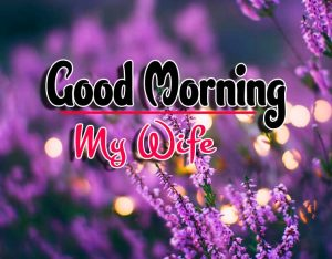 Best Latest Good Morning Wallpaper Download