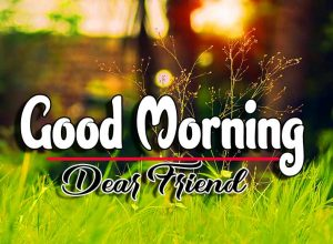 Best Latest Good Morning Wallpaper Images