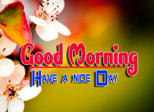 Best Latest Good Morning Wallpaper free