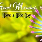 Best New Good Morning Images Walllpaper