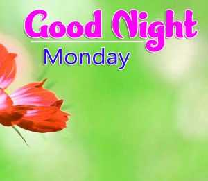 Best Quality Beautiful good night monday images Pics Download