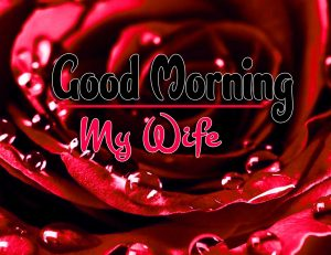 Best Spcieal Good Morning Download Free