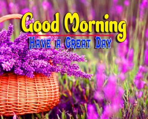 Best Spcieal Good Morning Download Free Hd